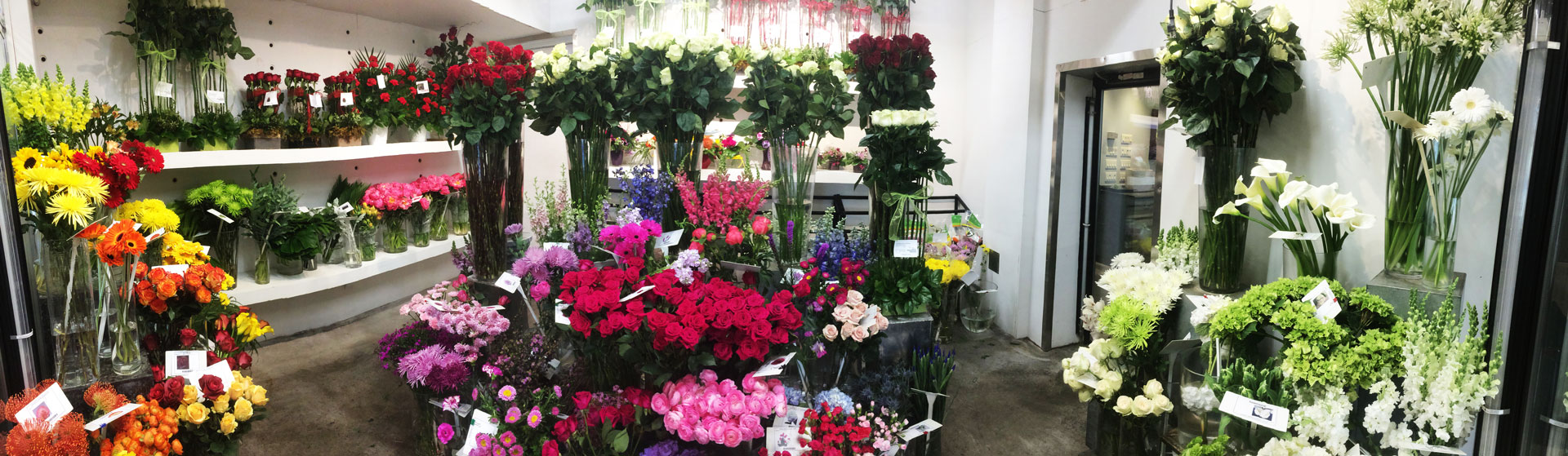 Loose cuts in flowershop