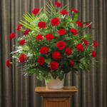 FUNERAL CARNATIONS 30 RED
