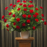 FUNERAL CARNATIONS 36 RED