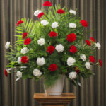 FUNERAL CARNATION 36 RED WHITE