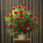 FUNERAL CARNATION 24 RED
