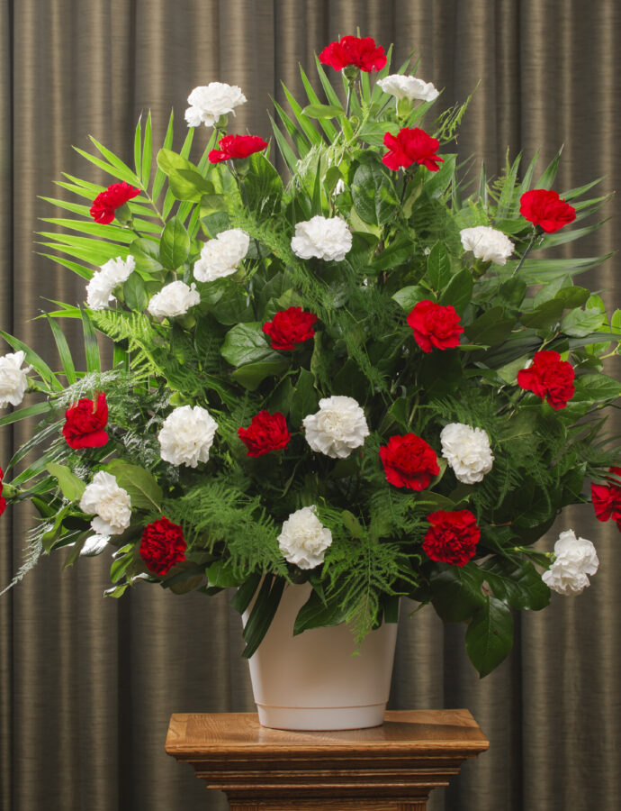 FUNERAL CARNATION 30 RED/WHITE