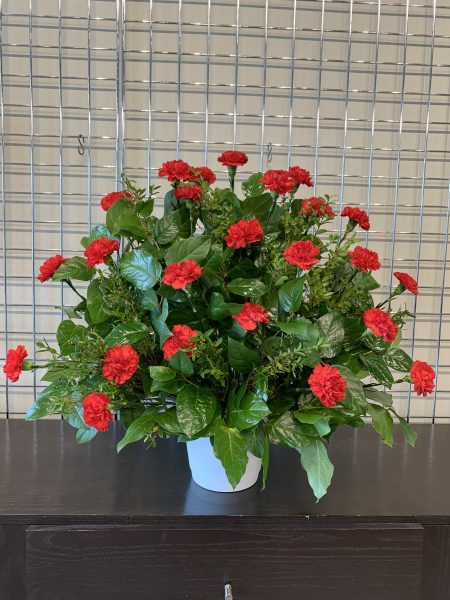 Boutique Funeral Carnation 24 Red