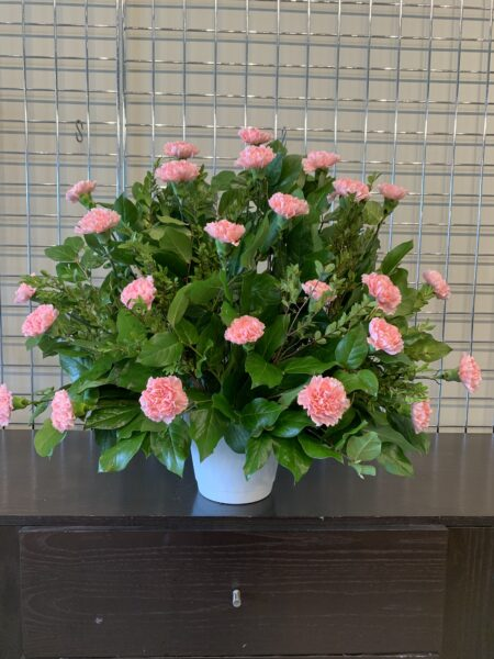 BOUTIQUE FUNERAL CARNATION 24 PINK