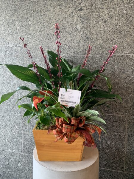Wooden Mixed Planter
