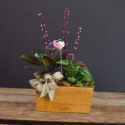Wooden Tropical Mixed Planter