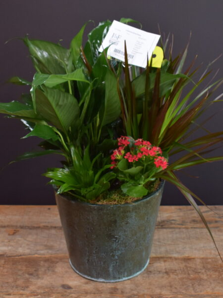 Cylindrical Mixed Planter